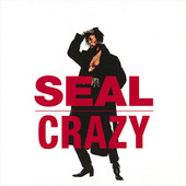The Single Crazy by Seal